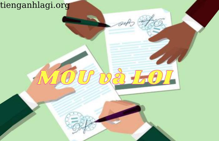 Phân biệt MOU vs LOI