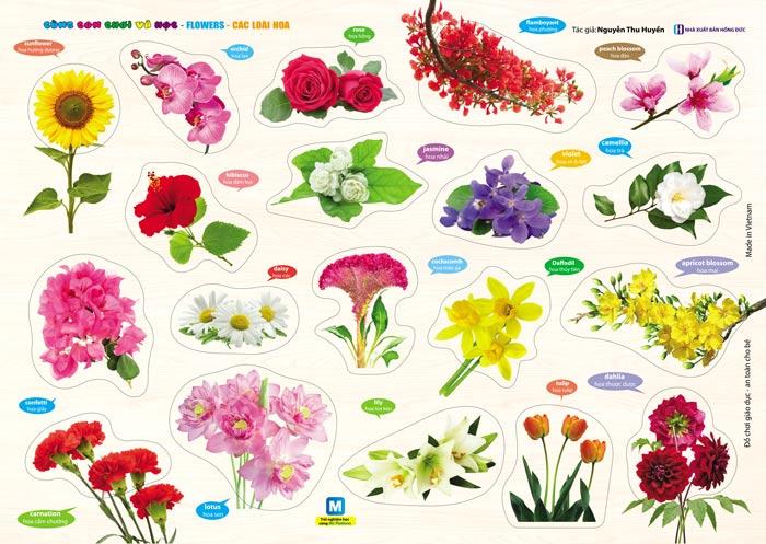 cách gọi tên các loài hoa trong tiếng Anh là gì